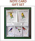 Note Cards Seeds and Tea Gift Sets